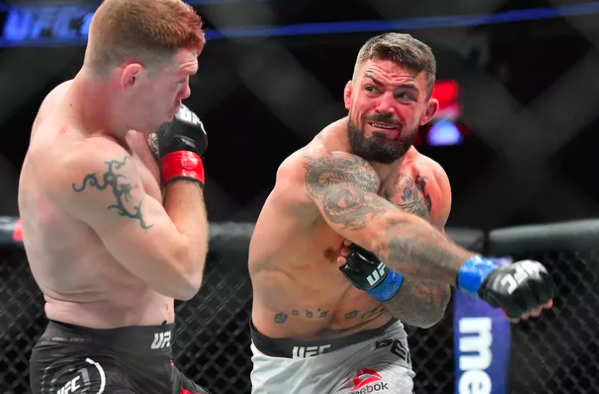 UFC 245 Perry Neal Odds